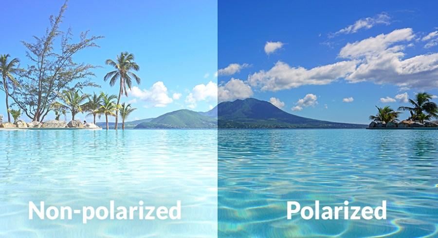 no polarized vs polarized